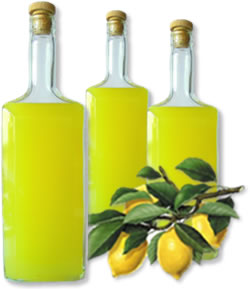 Limoncello ingredienti: